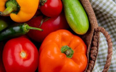 Soberanía Alimentaria en América Latina